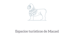 Foto fuente de los leones